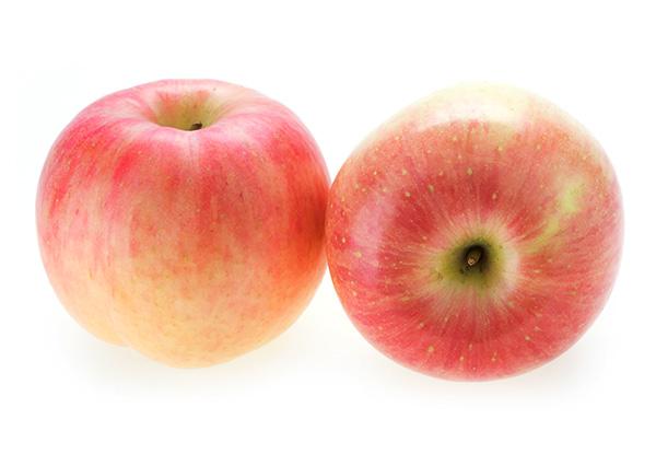 Fuji Apple Clausen Nursery
