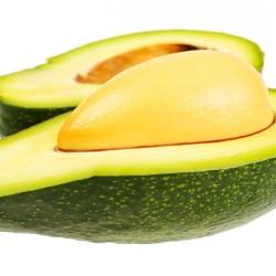 Zutano Avocado