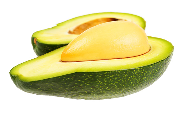 Zutano Avocado