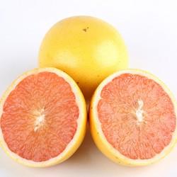 Cocktail Grapefruit