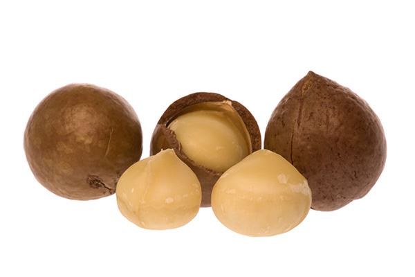 Jordan Macadamia Nut