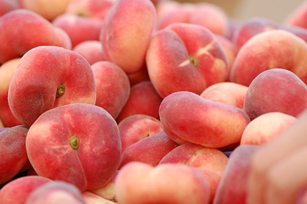 Donut Peach Clausen Nursery