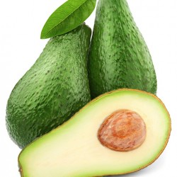 Pinkerton Avocado