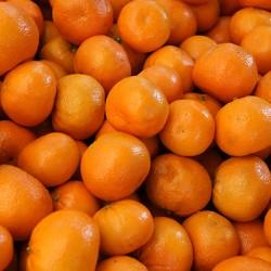 Murcott (Honey Tangerine)