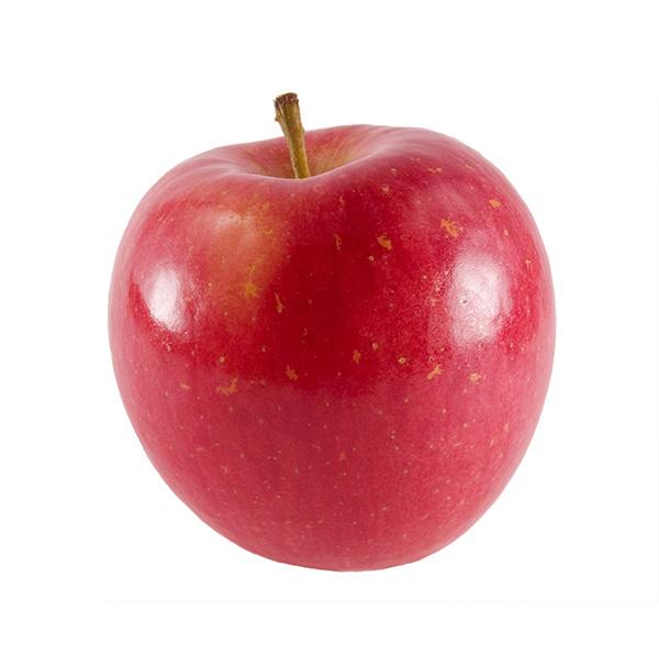 Red Fuji Apple Clausen Nursery