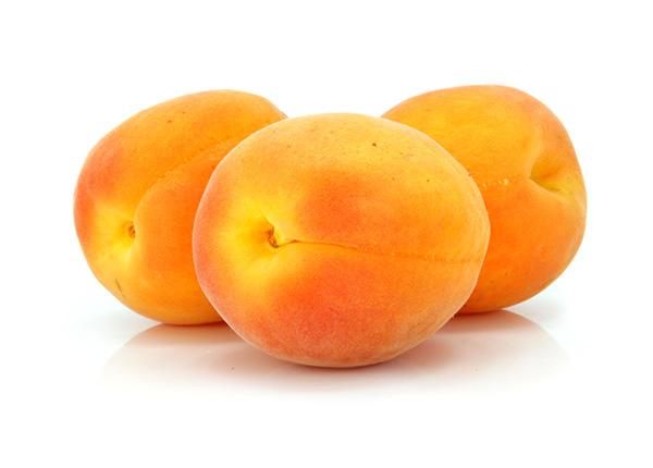 Royal/Blenheim Apricot Clausen Nursery