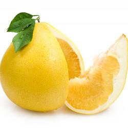 Reinking Pummelo Grapefruit