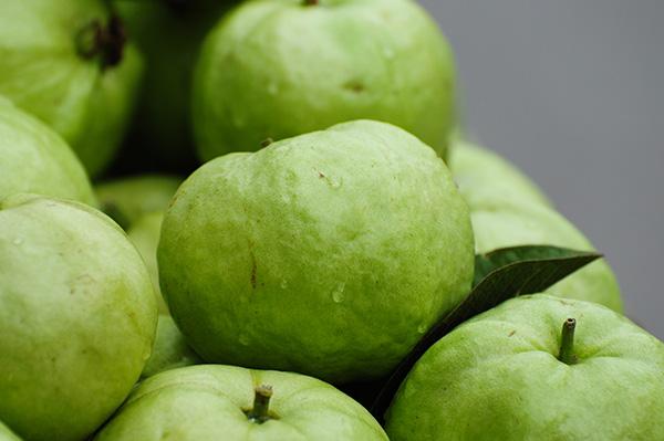 Bangkok Guava Clausen Nursery