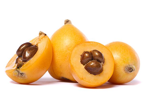 Golden Nugget Loquat
