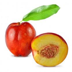 Sun Red Nectarine