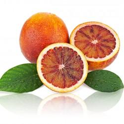 Moro Blood Orange